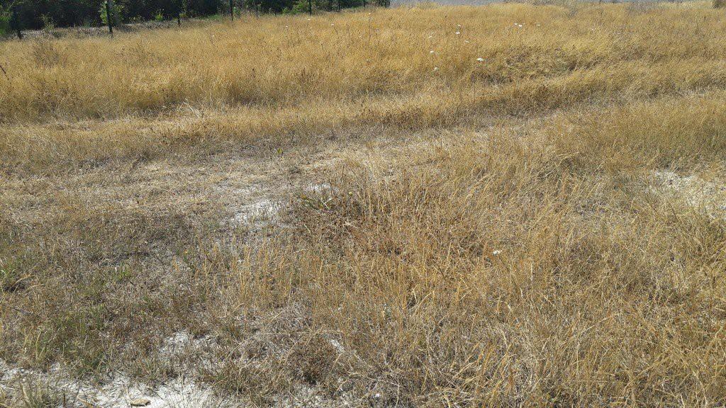 agence immobiliere proposant terrain à vendre en Vendée